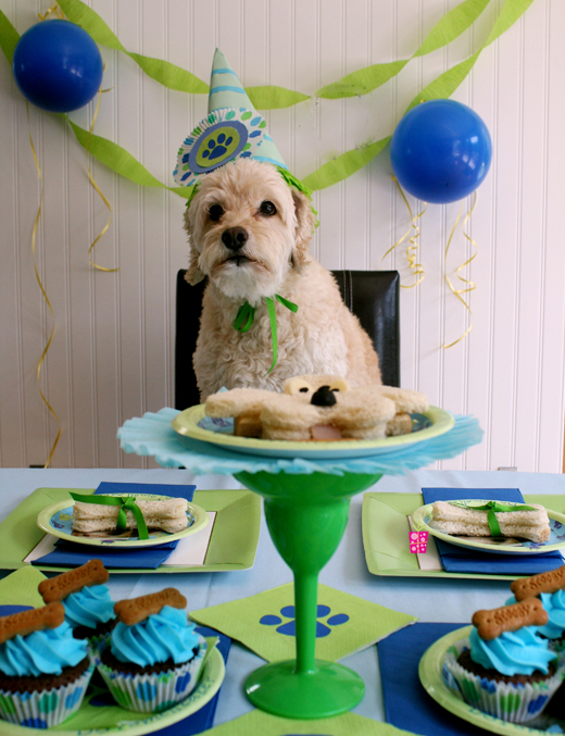 http://www.toppartyideas.com/puppy-dog-birthday-party/
