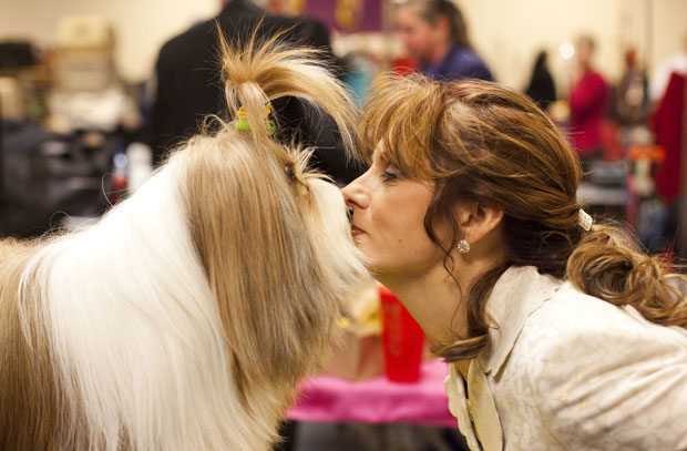 Dog and owner kiss at Westminster Dog Show