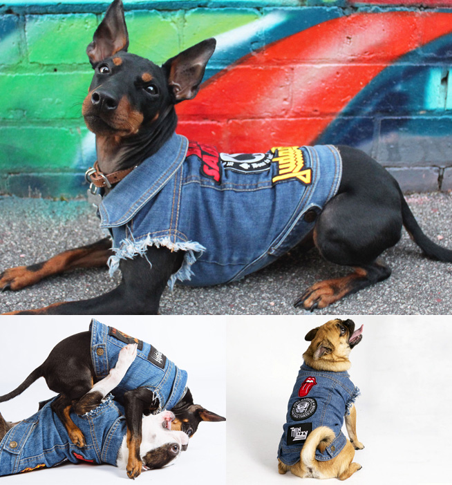 PetHaus denim dog jacket