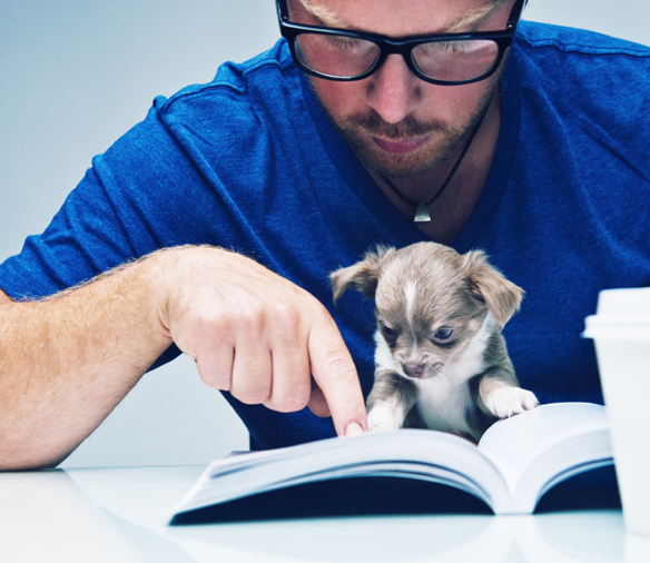 man reading about dogs